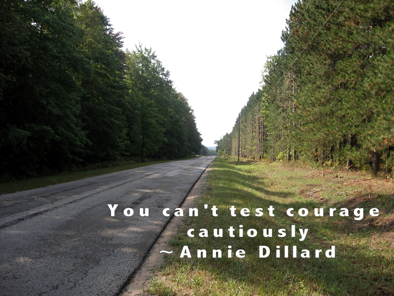 You can't test courage cautiously, Annie Dillard