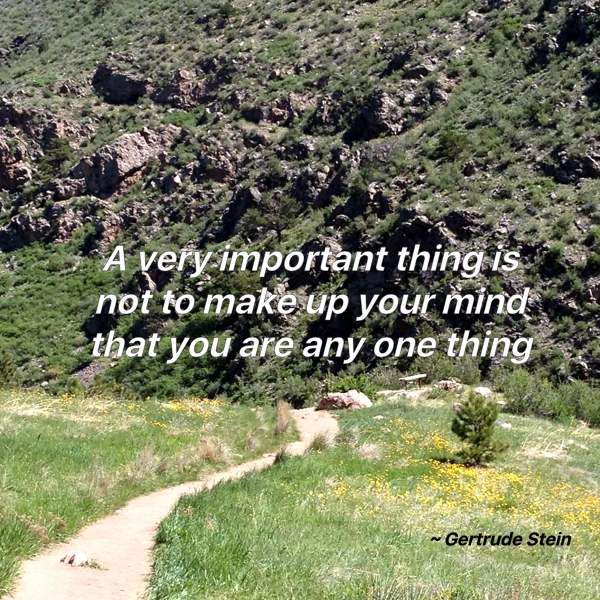 A very important thing is not to make up your mind that you are any one thing - Gertrude Stein
