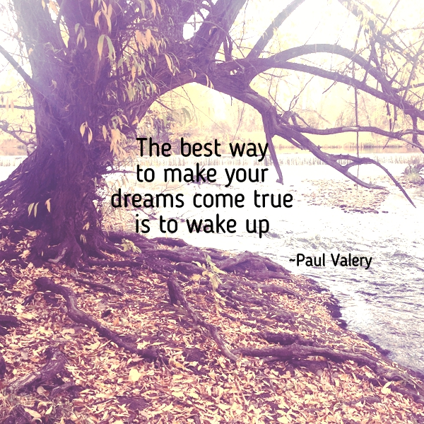The best way to make your dreams come true is to wake up. Paul Valery
