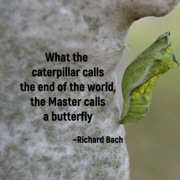 What the caterpillar calls the end of the world, the Master calls a butterfly. ~Richard Bach