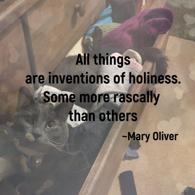 All things are inventions of holiness. Some more rascally than others. Mary Oliver