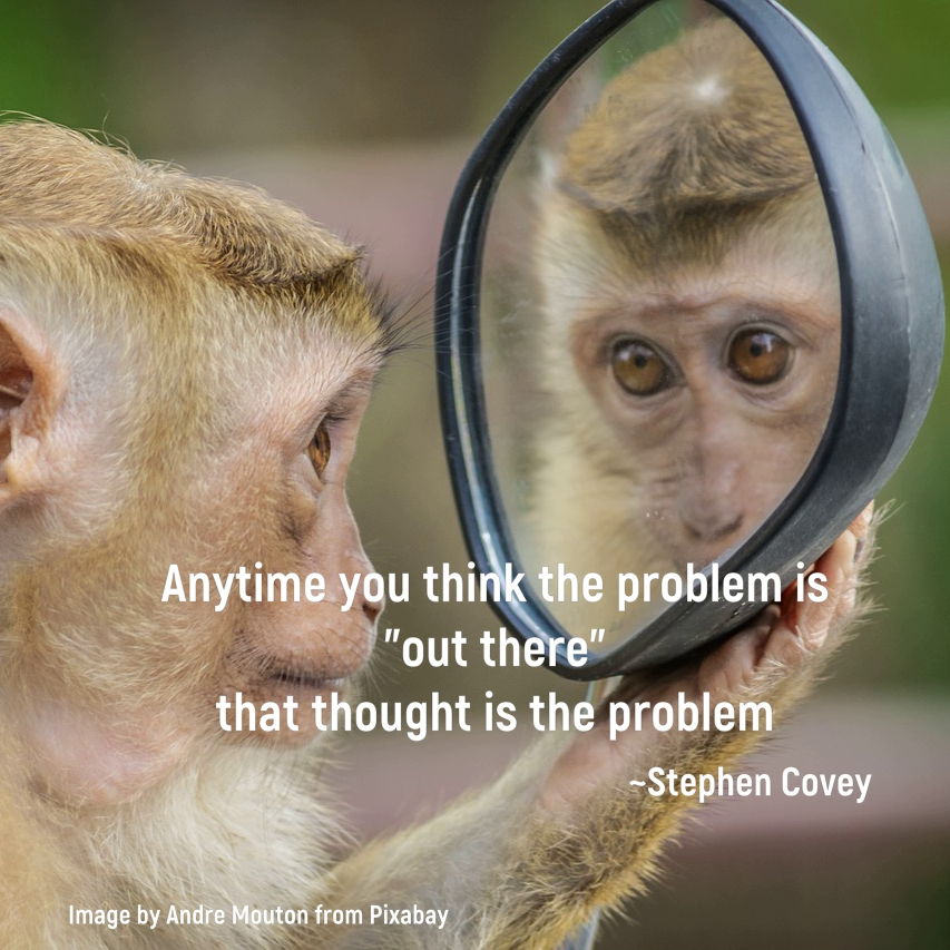"monkey looking into a mirror: Anytime you think the problem is ""out there"" that thought is the problem. Stephen Covey"