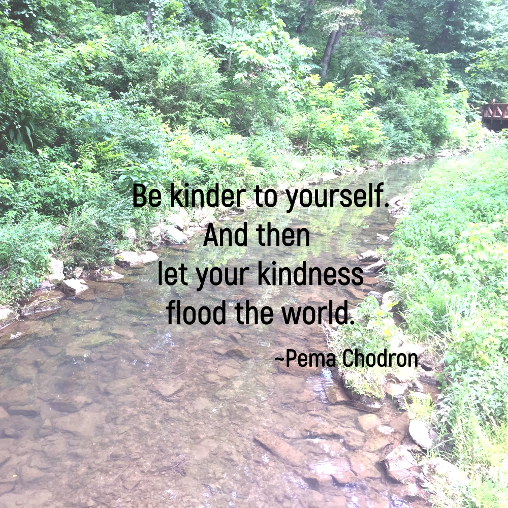 Be kinder to yourself. And then let your kindness flood the world. ~Pema Chodron