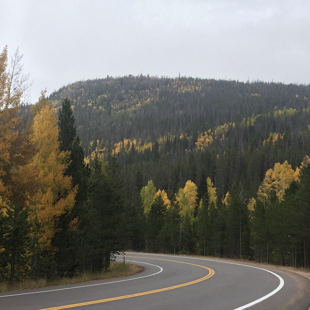 a highway through the fall colors