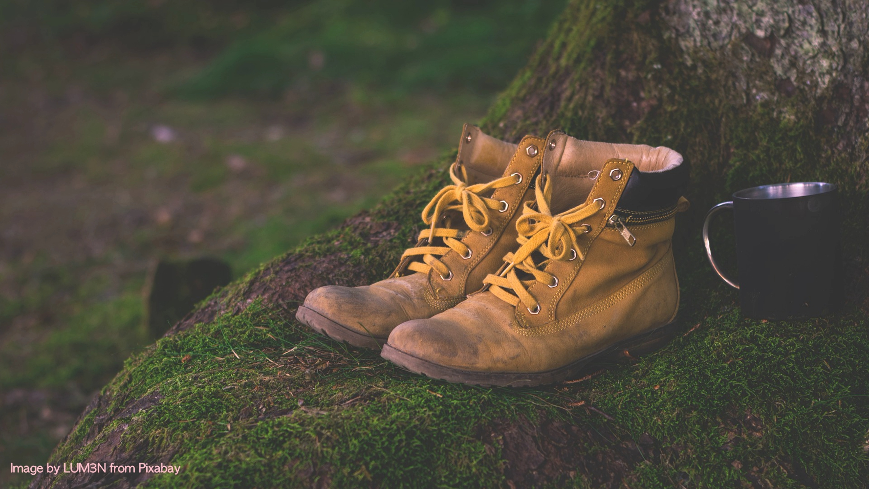 A pair of hiking boots resting in the outdoors
